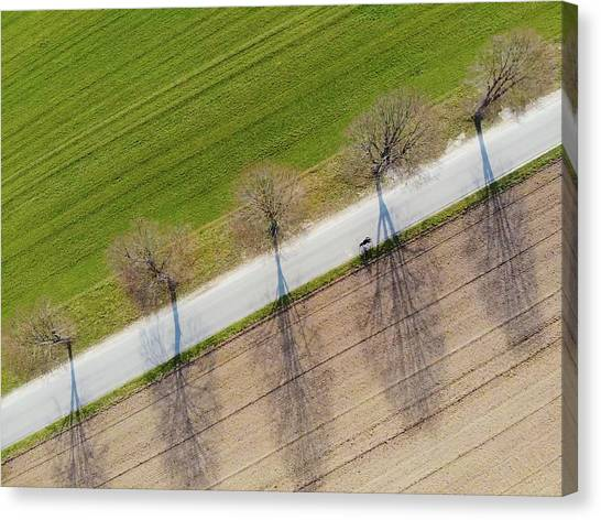 Minimalism Canvas Print - Road And Landscape From Above by Matthias Hauser