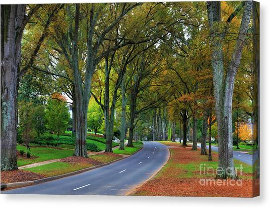 Road In Charlotte Canvas Print