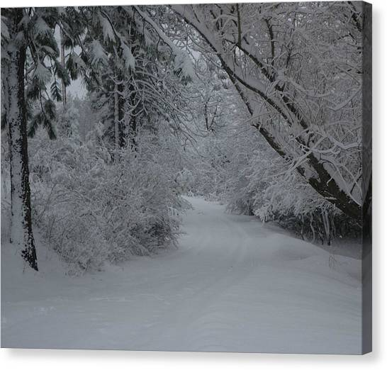 Road Out Canvas Print by Nancy Rohrig