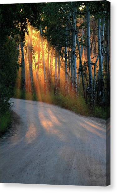 Road Rays Canvas Print