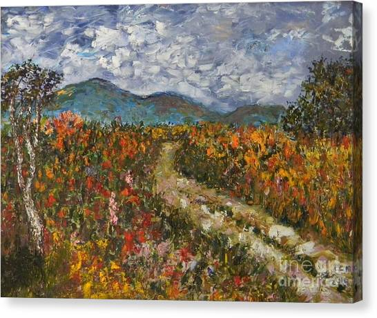 Road Through Colored Meadows Canvas Print by Emily Michaud
