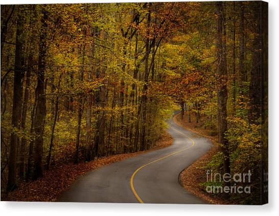 Canvas Print featuring the photograph Road Through Tishomingo State Park by T Lowry Wilson