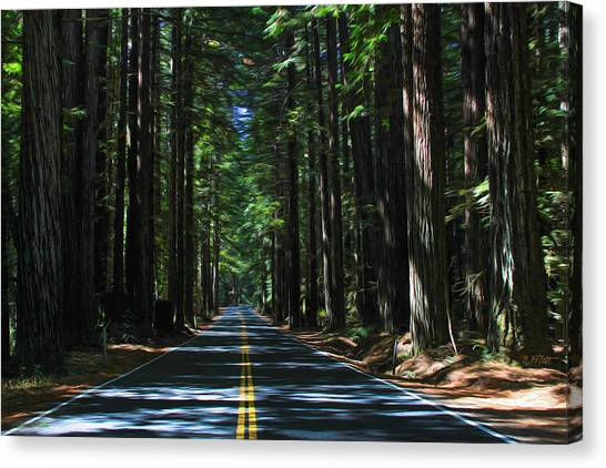 Road To Mendocino Canvas Print