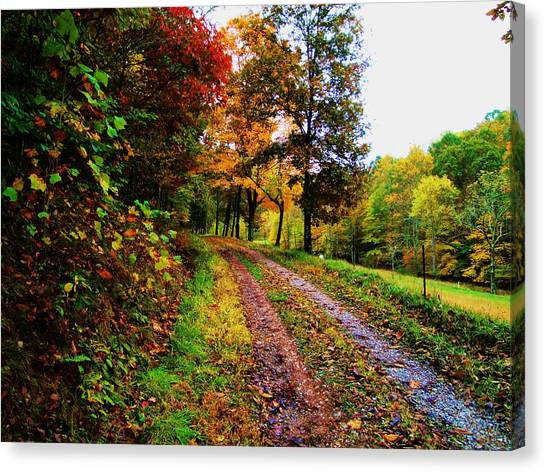 Road To My Farm Canvas Print by Terry  Wiley