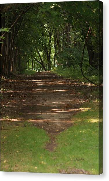 Road To Nowhere Canvas Print by Heather Green