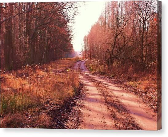 Canvas Print - Road To Somewhere by Slawek Aniol