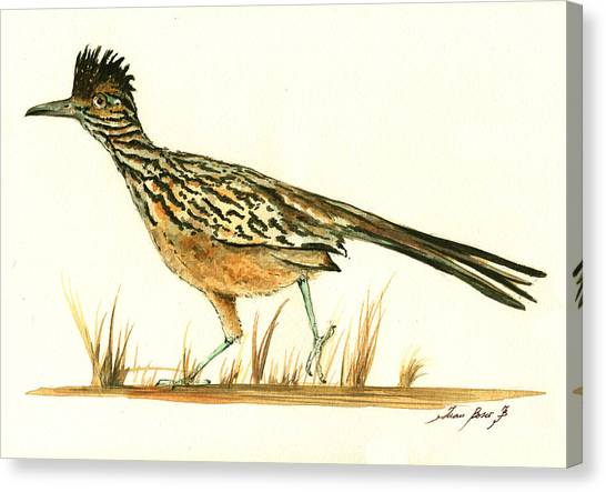 Roadrunner Canvas Print - Roadrunner Bird by Juan Bosco