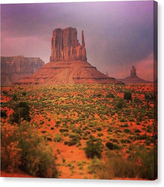 Roadrunner Canvas Print - #roadrunner #wileecoyote by Clinton Brandhagen
