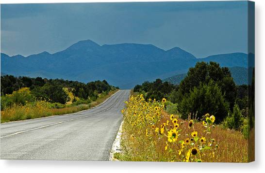 Roadside Florist Canvas Print