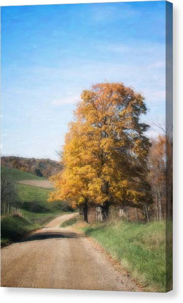 Dirt Road Canvas Print - Roadside Tree In Autumn by Tom Mc Nemar