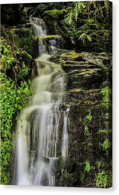 Roadside Waterfall Canvas Print