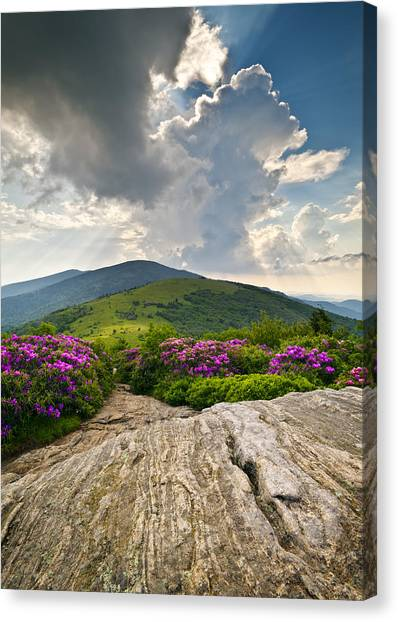 Roan Mountain Rays- Blue Ridge Mountains Landscape Wnc Canvas Print