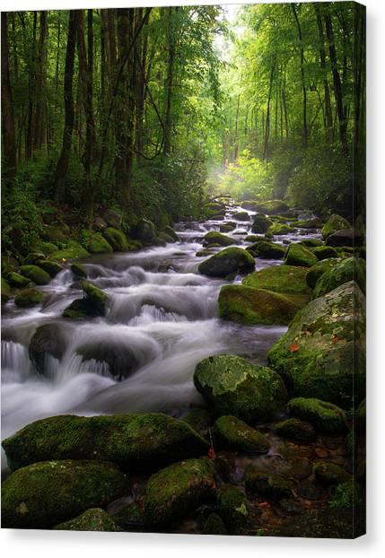 Great Smoky Mountains Roaring Fork Gatlinburg Tennessee Canvas Print
