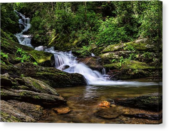 Roaring Fork Waterfall Canvas Print