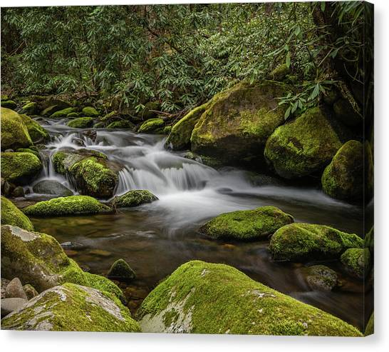 Roaring Fork Canvas Print