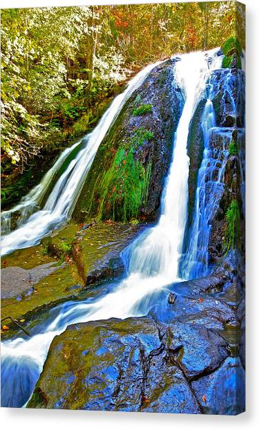 Roaring Run Falls State Park Virginia Canvas Print