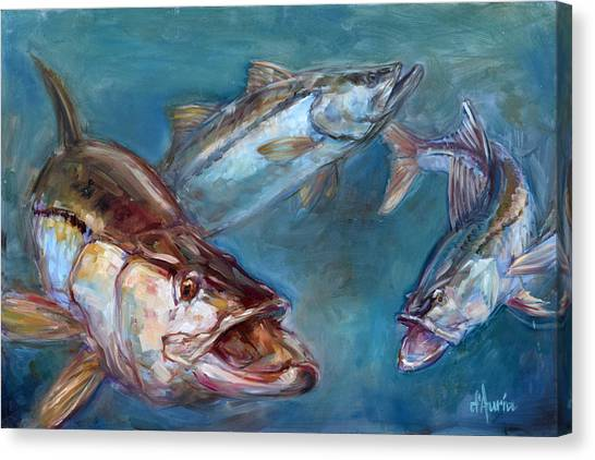 Saltwater Life Canvas Print - Robalo by Tom Dauria