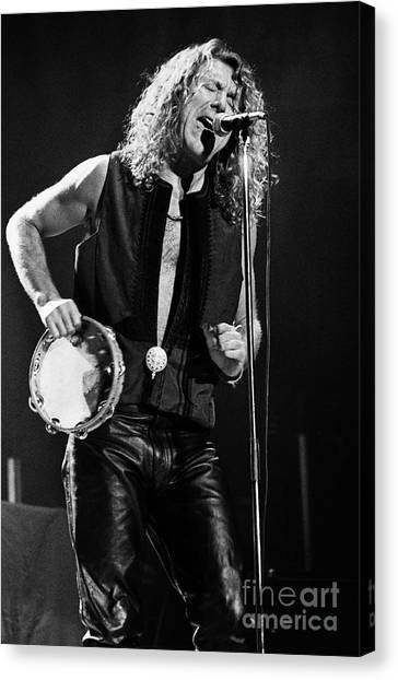 Jimmy Page Canvas Print - Robert Plant-0062 by Timothy Bischoff