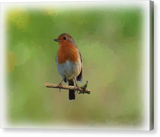 Canvas Print featuring the digital art Robin-1 by Paul Gulliver