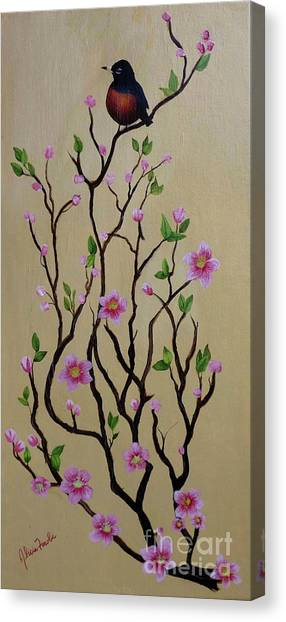 Robin And Spring Blossoms Canvas Print