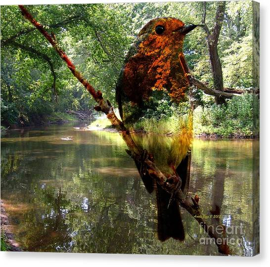 Robin By The River Canvas Print
