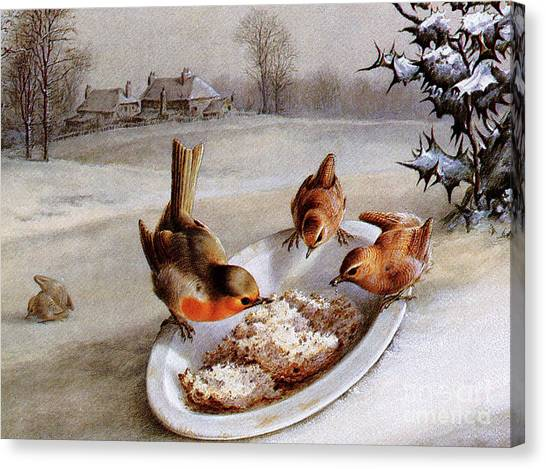 Wrens Canvas Print - Robins And Wrens  Winter Breakfast by Harry Bright