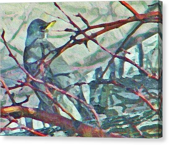 Robins Impression Of Spring Canvas Print