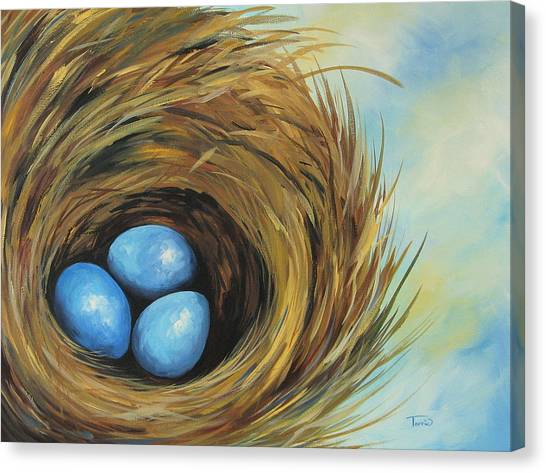 Robin's Three Eggs II Canvas Print