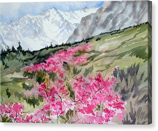 Rock Creek Desert Peach Canvas Print