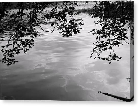 Rock Pond Canvas Print