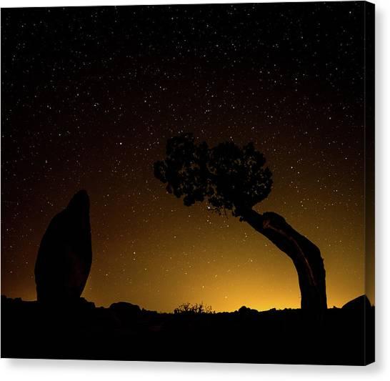 Rock, Tree, Friends Canvas Print