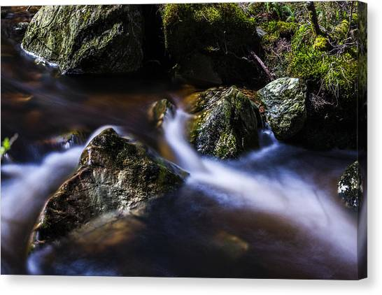 Rocks In A Stream Canvas Print