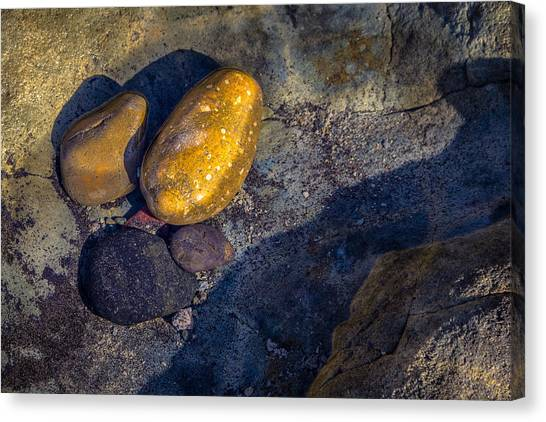 Rocks In Tidepool Canvas Print