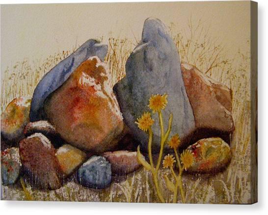 Rocks Canvas Print by Teresa Boston