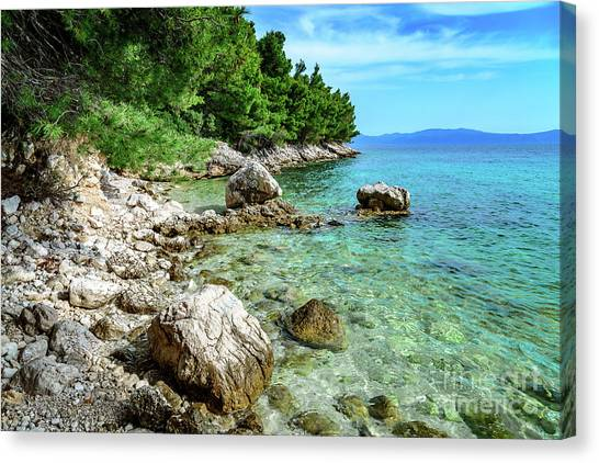 Rocky Beach On The Dalmatian Coast, Dalmatia, Croatia Canvas Print