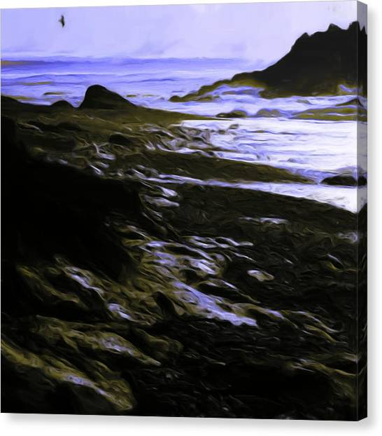 Rocky Beach Canvas Print by Shelley Bain