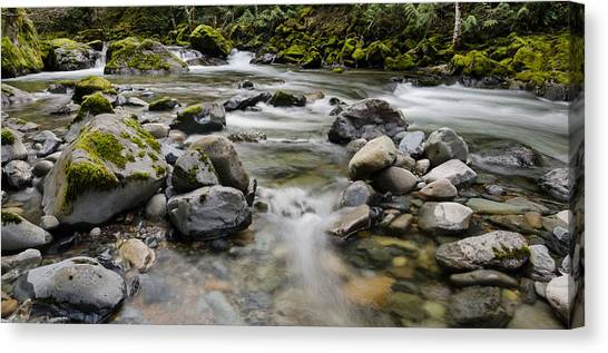 University Of Oregon Uo Canvas Print - Rocky Clear River by Margaret Pitcher