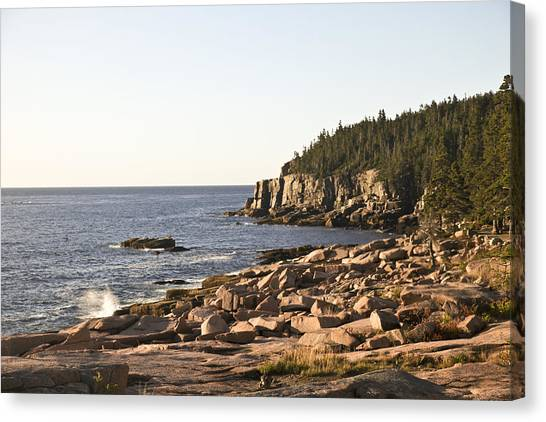 Rocky Coast Of Acadia Canvas Print by Frank Russell