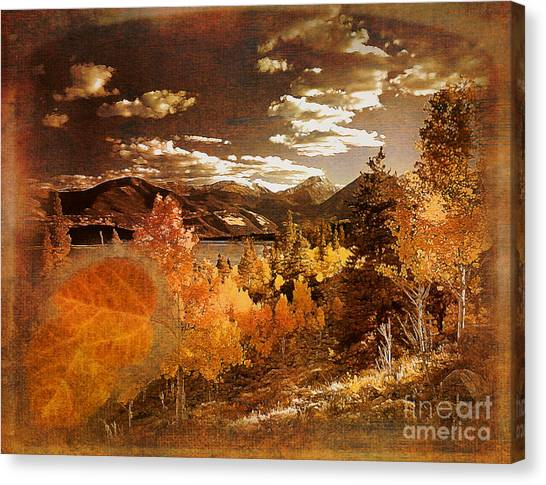 Rocky Mountain Gold 2015 Canvas Print