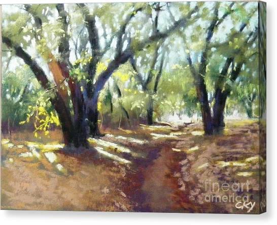 Rocky Oak Park Canvas Print