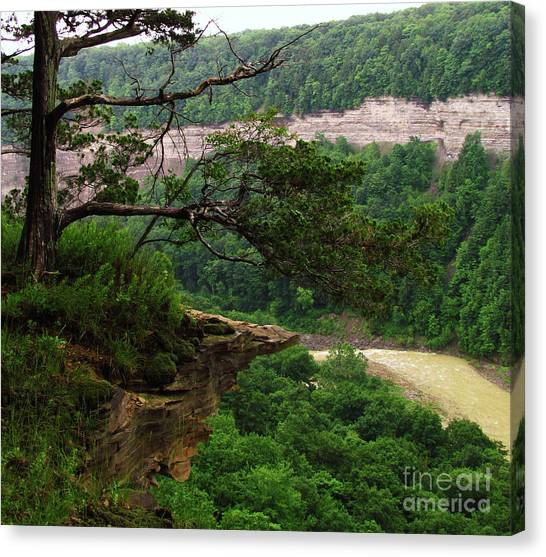 Rocky Overhang Canvas Print