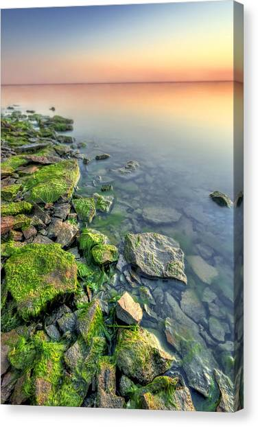 Rocky Shoreline Canvas Print by Ryan Heffron