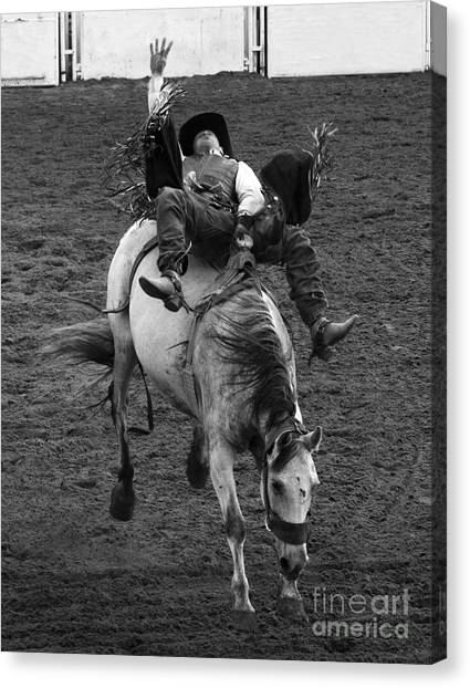 Bareback Canvas Print - Rodeo Bareback Riding 13 by Bob Christopher