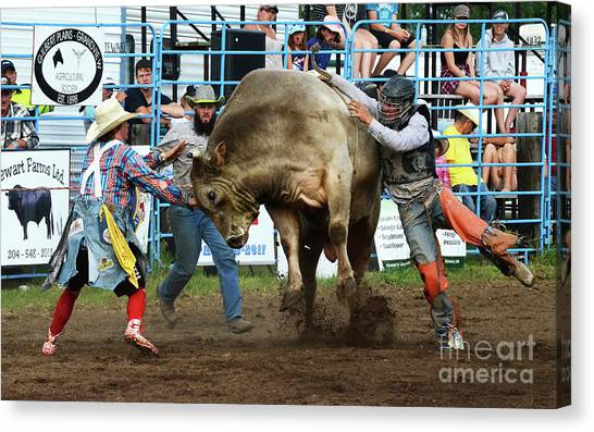 Bull Riding Canvas Print - Rodeo Life 5 by Bob Christopher