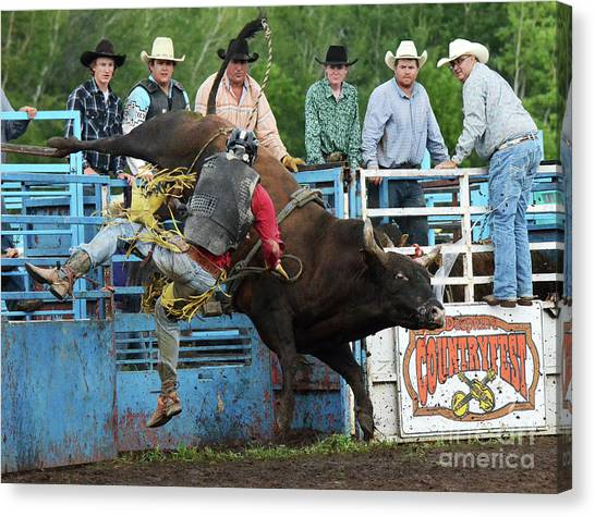 Bull Riding Canvas Print - Rodeo Life 6 by Bob Christopher