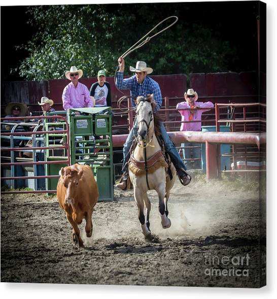 Cowboy In Action#1 Canvas Print