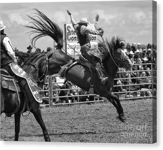 Bareback Canvas Print - Rodeo Saddleback Riding 15 by Bob Christopher