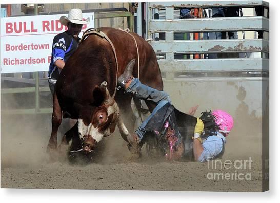 Bull Riding Canvas Print - Rodeo Stars 2 by Bob Christopher