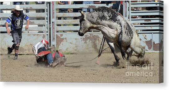 Bull Riding Canvas Print - Rodeo Stars 5 by Bob Christopher