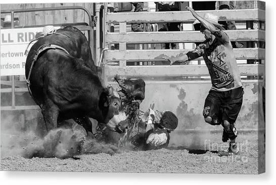 Bull Riding Canvas Print - Rodeo Stars 6 by Bob Christopher